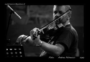 Danilo Rossi copy
